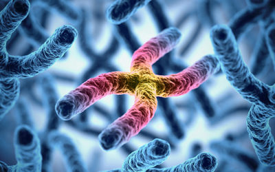 Make friends with your telomeres