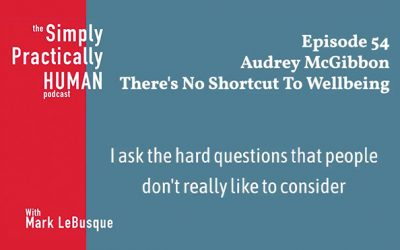 Audrey talks wellbeing strategy on the Simply, Practically Human podcast
